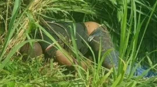 Tragic Photos!! Man Found Dead In A Bush With Legs And Hands Tied 5