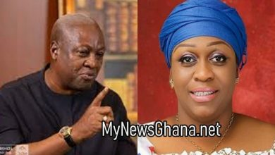 'Mahama's 1m job creation is a scam' – Mame Yaa Aboagye 41